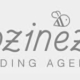 logocozinezz-wholesale of crockery-Trends&trade-Venlo